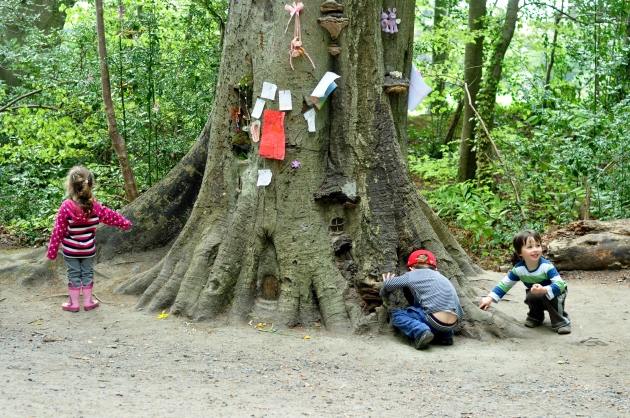 Fairy Tree in Marley Park