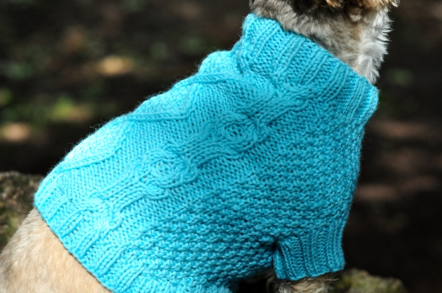 Dog Jumpers 053