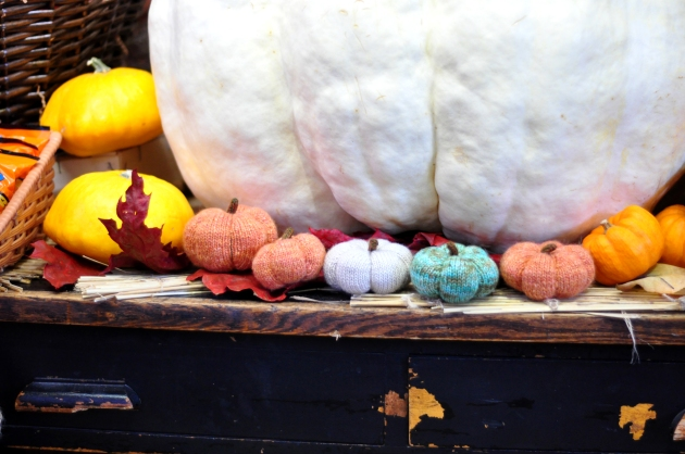 Tiny knitted pumpkins in orange, green and white with a giant white pumpkin, knitting